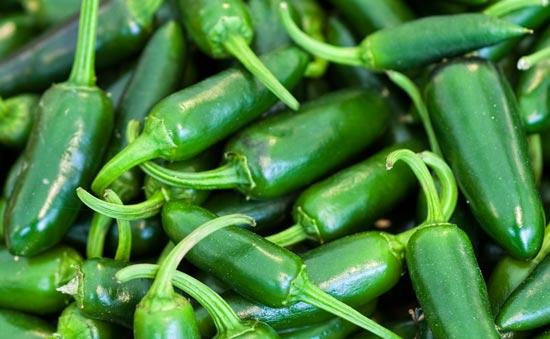Chef Jeff - Salsarific™ Pepper Mucho Nacho  Jalapeno