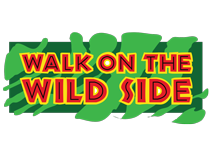 Walk on the Wild Side® Groundcovers