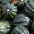 'Table Ace' Acorn Squash